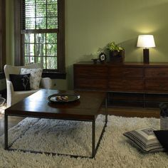 livingroom colors with brown furniture   7f9172c40aa80f43_1000-w406-h406-b0-p0--eclectic-living-room.jpg