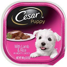 CESAR Canine Cuisine Puppy with Chicken and Beef Puppy Food Trays Ounces (Pack of You could find more details by visiting the image link. (This is an affiliate link and I receive a commission for the sales) Wet Dog Food, Puppy Food, Cat Food, Small Puppies, Small Dogs, Chicken And Beef Recipe, Canned Dog Food, Food Trays, Dog Barking