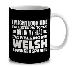 In My Head I'm Walking My Welsh Springer Spaniel