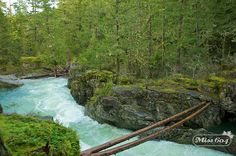 Little Qualicum Falls Provincial Falls via Rebecca Bollwitt (Miss 604). Click to read the article. #ExploreCanada #exploreBC #exploreVancouverIsland #myPQB