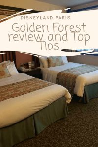 golden forest sequoia lodge top tips