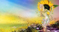 Summer Sunflower Crop