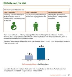 Australia's Health 2014 - in brief Diabetes