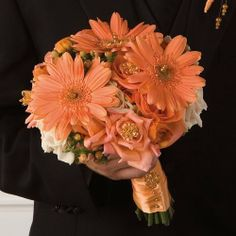 Simple Wedding Bouquets Using Gerbera Daisies - The Wedding Specialists Simple Wedding Bouquets, Fall Wedding Flowers, Bridesmaid Flowers, Bridesmaids, Fall Flowers, Autumn Wedding, Gerbera Bridal Bouquet, Gerbera Daisy Wedding, Hydrangea Bouquet