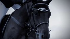 Breathtaking video ~ Longines vision of Show jumping in 2014 ~ featuring the Longines Ambassador of Elegance, Jane Richards