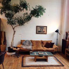 pinterest // lilyxritter Boa ideia de árvore, pendendo sobre o sofá