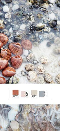 Gorgeous colour palette   N O T S T A T I C Blog