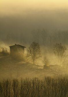 foggy by Marco Barone