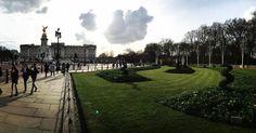 Classic tourist shot #london #buckinghampalace by nicolaahastings