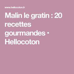 Malin le gratin : 20 recettes gourmandes • Hellocoton