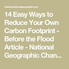 14 Easy Ways to Reduce Your Own Carbon Footprint - Before the Flood Article - National Geographic Channel