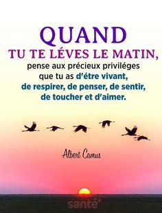 Positive Attitude, Positive Quotes, Motivational Quotes, Inspirational Quotes, Albert Camus, Dream Quotes, Life Quotes, Staff Motivation, Daily Meditation
