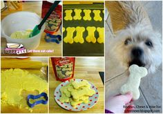 Reviews, Chews & How-Tos: Review and Giveaway: Puppy Cake Holiday Cookies