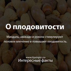 Миндаль, авокадо и рукола стимулируют половое влечение и повышают плодовитость. #интересныефакты #орехи #мужскаясила #миндаль #авокадо #рукола #либидо
