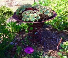 My rusty garden sculpture made from an old plough disc and an old spring. My rusty garden Recycled Garden Art, Metal Garden Art, Rusty Garden, Lawn And Garden, Outdoor Sculpture, Garden Sculpture, Sensory Garden, Diy Garden Projects, Metal Projects
