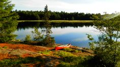 See 4 photos from 10 visitors to Bon Echo Provincial Park. Outdoor Camping, Outdoor Travel, Ontario Provincial Parks, 4 Photos, Travel And Tourism, Dog Friends, The Great Outdoors, Places To Go, Trail