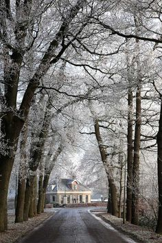 Westervelde, Drenthe, The Netherlands