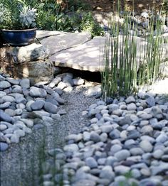 We want to add a dry bed for drainage - love this one....