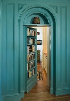 I have ALWAYS dreamed of a hidden door bookshelf!