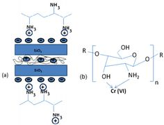 Schematic structure of chitosan and clay hybrid and (b) mechanism of interaction of closite 10 A/chitosan nanocomposite (CCN) with Cr(VI). Reprinted with permission from [199]. Copyright 2011 Elsevier. - See more at: http://www.mdpi.com/1996-1944/7/2/673/htm#sthash.KF6A37kr.dpuf
