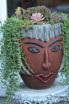 Succulent Head by Ann DuMont