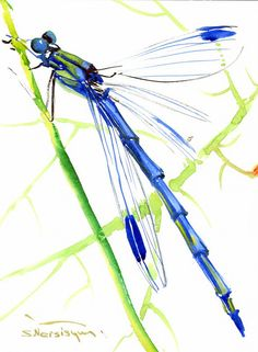 Blue Dragonfly Painting, original watercolor 12 x 9 in, dragonfly lover art
