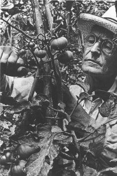 Hermann Hesse in the garden...♔..
