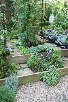 To reduce runoff on slopes, use raised kitchen garden beds for herbs and vegies.#raisedbeds  #gardenideas