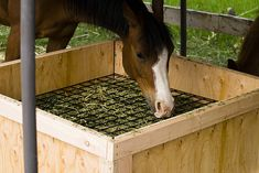 Slow hay feeder for horses. Would need to do something different in the winter though, so tongues don't get stuck!