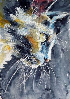 Ꮳαɬ αʀɬ (Cat by Kovács Anna Brigitta)