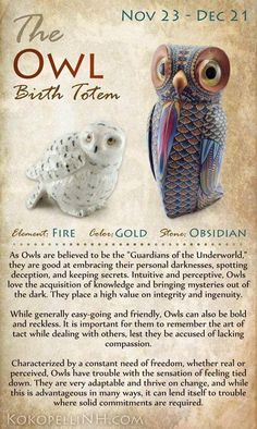 Are you the mysterious Owl? The Owl Native American Birth Totem represents those born from Nov 23 - Dec Owls love knowledge and freedom. Visit our website to read more about this birth totem. ~ another spirit animal. Native American Wisdom, American Indians, Native American Astrology, Native American Animals, Native American Spirituality, Native American Cherokee, Animal Spirit Guides, Spirit Animal Owl, Owl Animal