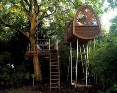 Most Expensive Tree House In The World top 5 most expensive treehouses in the world | architecture