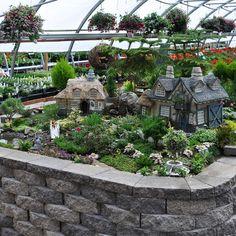 Miniature Fairy Garden from Winter Greenhouse, WI