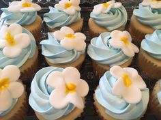 Luau Themed Cupcakes.. Shop rite cupcakes with edible flowers on top