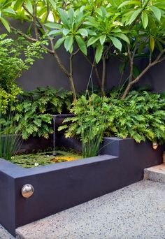 Gardens with Cinder block wall
