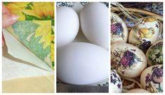 Eggs, Egg, Egg As Food