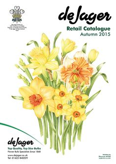 De Jager Bulbs Retail Catalogue Autumn 2015  Latest Catalogue for De Jager Bulbs. Established 146 years ago maintaining a remarkable reputation for supplying the highest quality top sized bulbs.