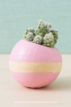 These cacti looks so cute in this painted bell cup!