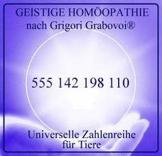 Hilfe für Tiere - Leitseite Geistige Homöopathie