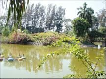 Vanganga Lake #Silvassa. http://www.resortsinsilvassa.com/silvassa-sightseeing