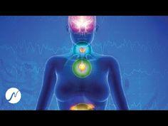 Aktivujte endokrinný systém (epifýza, štítna žľaza, nadobličky) - digitálna hormonálna liečba - YouTube Adrenal Glands, Pineal Gland, Digimon, Thyroid, Yoga Meditation, Lava Lamp, Youtube, Gallery, Endocrine System