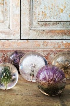 Stunning paperweight collection