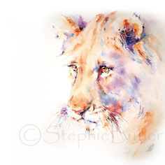 Lion Canvas Print / Canvas Art by Stephie Butler Watercolor Lion, Watercolor Animals, Watercolor Paintings, Watercolors, African Animals, African Art, Animal Paintings, Animal Drawings, Lion Painting