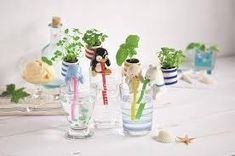 Chuppon Drinking Animal Planter Sea Friends 4 Designs