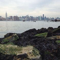 From our Brooklyn adventures yesterday. #nyc #brooklyn #vscocam #eastriver #skyline - http://instagram.com/jennchambless