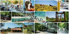 Camping Rural, un pequeño paraíso en las Rías Baixas #camping #riadearosa #Galicia  www.campingriadearosa.com