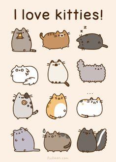gifs tumblr memes cats book funny gifs pusheen shop relatable cat ...