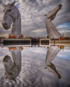 The two largest equine sculptures in the world are fashioned from 600 metric tons of steel. These 100 ft tall horse heads by sculpture Andy Scott, stand along the banks of the Fourth & Clyde canal in Falkirk, Scotland, as a monument to working horses in Scotish history.   The Kelpies