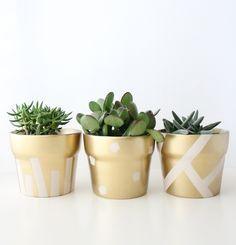 Ideas succulent diy pots terra cotta for 2019 Painted Flower Pots, Painted Pots, Deco Theme Marin, Suculentas Diy, Diy Simple, Colorful Succulents, Succulent Pots, Diy Planters, Terracotta Pots
