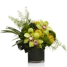 Green Cymbidium Orchids & Jade Tracelium -H.Bloom
